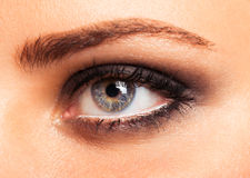 Closeup of beautiful womanish eye with glamorous makeup Stock Image