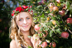 Closeup on beautiful young lady apple fairy with Royalty Free Stock Images
