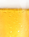 Closeup of beer Royalty Free Stock Image