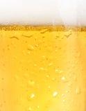 Closeup of beer royalty free stock image
