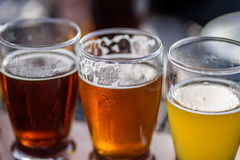 Closeup of a beer flight outside on a sunny day. Macro closeup of three sample taster glasses of craft brew beer at outside beer garden Stock Image