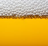 Closeup beer with foam. Stock Image