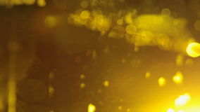 Closeup of Beer poured into a glass stock video footage