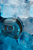 Can in ice Stock Image