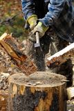 Closeup of birch wood being chopped on a stump Stock Photos