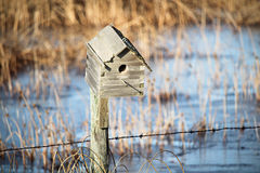 Closeup of a bird house.  Royalty Free Stock Images
