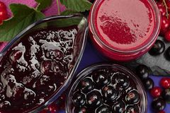 Currant jam in glass royalty free stock images