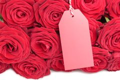 Closeup of blank tag with roses Royalty Free Stock Image