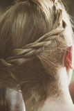 Closeup of blonde woman hair with braid. Back view Stock Photography