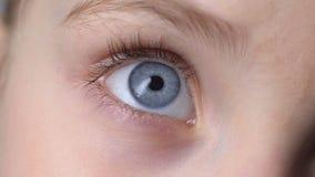Closeup of blue child eye, concept of genetics inherited traits, innocent look