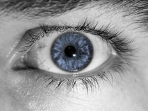 Closeup of blue eye. A closeup view of a human eye in black and white with a light blue iris royalty free stock photos