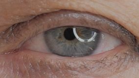 Closeup of blue female eye. stock footage