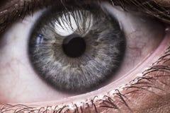 Closeup of blue human eye Royalty Free Stock Images