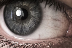 Closeup of blue human eye Stock Image