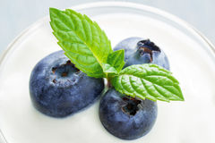 Closeup Blueberry and Mint. Closeup of antioxidant superfood in a glass of yoghurt stock photography