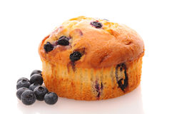Closeup of a Blueberry Muffin on a white surface Royalty Free Stock Image
