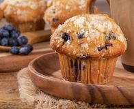 Closeup of a Blueberry Muffin on a Wooden Plate Royalty Free Stock Photography