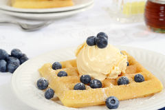 Closeup blueberry and vanilla ice cream waffles Stock Images