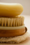 Closeup body brush soap and scrub glove Royalty Free Stock Image