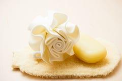 Closeup body sponge soap and scrub glove Stock Photo