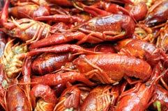 Closeup boiled craw fish Royalty Free Stock Photography