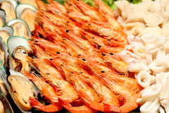 Closeup boiled shrimp , prawns and squid Royalty Free Stock Images