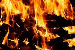 Closeup bonfire. Fire flame details of bonfire Royalty Free Stock Image