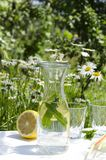 Vertical shot of cold drink for hot summer days, bottle of cold water with lemon and mint,glasses on the white table against flowe stock images