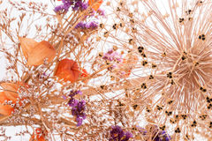 Closeup bouquet of dried flowers Royalty Free Stock Image