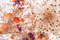 Closeup bouquet of dried flowers Stock Image