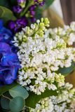 Closeup of bouquet of white and blue spring flowers Stock Images