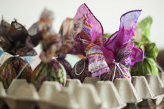 Closeup box lined with Easter eggs. Eggs are in the process of p Royalty Free Stock Image