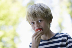 Closeup Of Boy Eating Strawberry Outdoors. Closeup portrait of a blond boy eating strawberry outdoors Stock Images