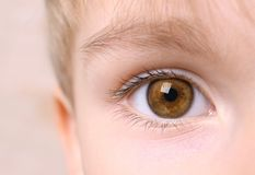 Closeup of boy eye. Closeup of beautiful boy eye royalty free stock image