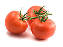 Closeup of branch of tomatoes. Isolated on white background Stock Images