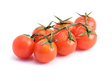 Closeup of branch of tomatoes. Isolated on white background Royalty Free Stock Photo