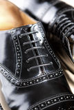 Closeup of Brand New Fahionable Male Classic Oxford Semi-Brogue Royalty Free Stock Photo