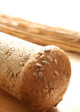 Closeup of bread roll Royalty Free Stock Images