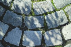 A closeup of a brick road. With a tree shadow stock photo