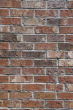 Closeup of a Brick Wall Stock Images