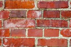 Closeup on brick wall Stock Photos