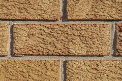 Closeup of brick wall, orange and red background Royalty Free Stock Images