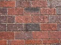 Closeup of brick wall Stock Images