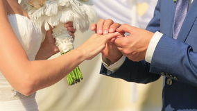 Closeup of bride and groom exchanging wedding rings. Couple in love.  stock video footage