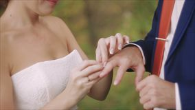 Closeup of bride and groom exchanging wedding rings over green nature background stock footage