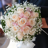 Closeup bride holding bouquet of pink roses Royalty Free Stock Images