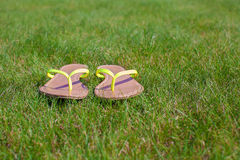 Closeup of bright flip flops on green grass Royalty Free Stock Photo