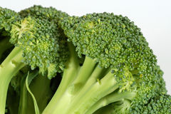 Closeup of Broccoli Royalty Free Stock Photography