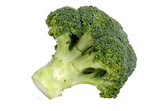 Closeup of broccoli Royalty Free Stock Photos