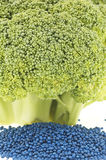 Closeup of broccoli floret and its seed Royalty Free Stock Photo